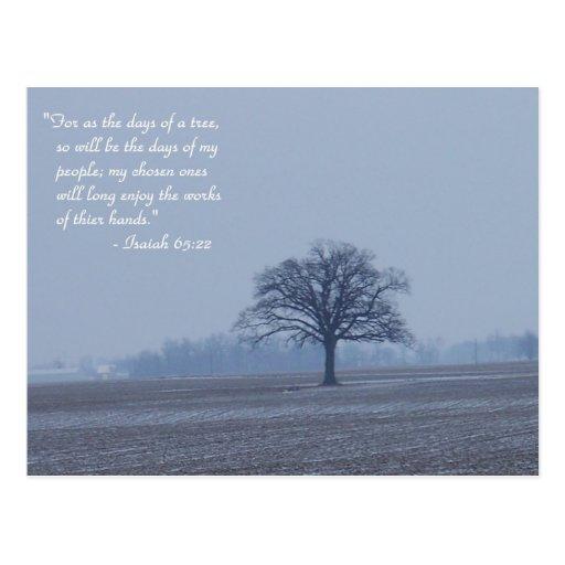 Postal del árbol del 65:22 de Isaías