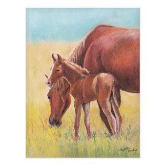 Postal del arte del caballo del potro y de la