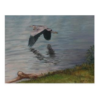 Postal del arte del pájaro de la garza de gran azu