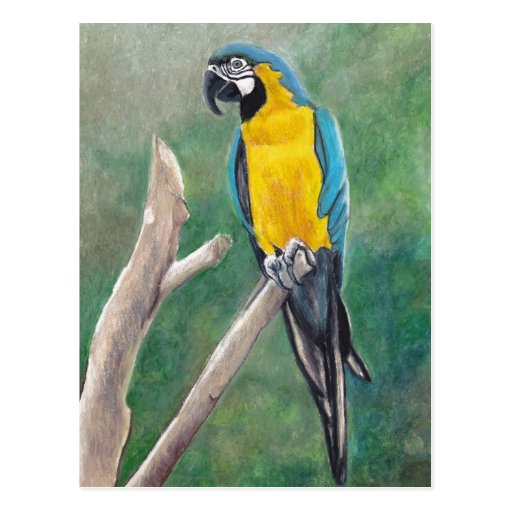 Postal del arte del pájaro del Macaw del azul y de