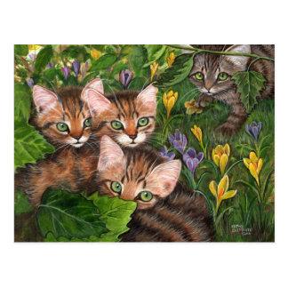 Postal del azafrán de 4 gatitos