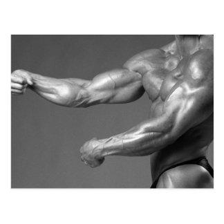Postal del bíceps