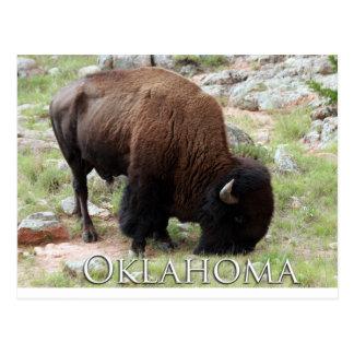 Postal del bisonte de Oklahoma