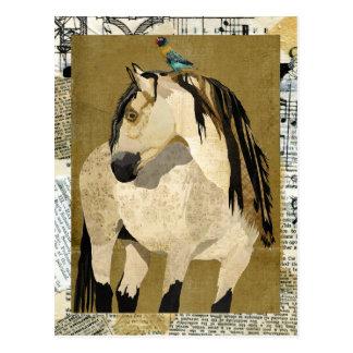 Postal del caballo blanco y del pájaro