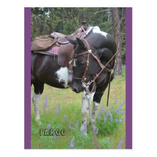 Postal del caballo de Fargo de la yegua del Pinto