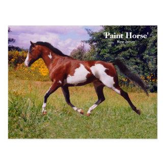 Postal del caballo de la pintura de la primavera