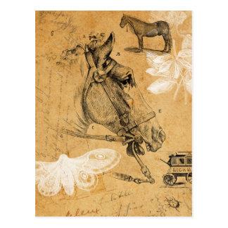 Postal del caballo del vintage