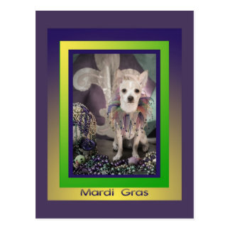 Postal del carnaval del perro de la chihuahua