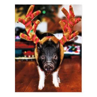 Postal del cerdo del navidad