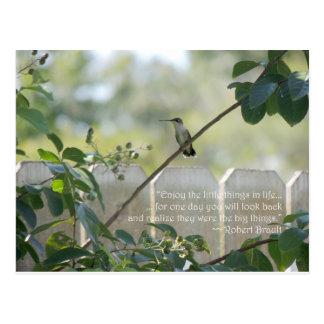 """Postal del colibrí con cita de las """"pequeñas"""