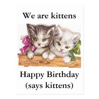 Postal del cumpleaños de los gatitos