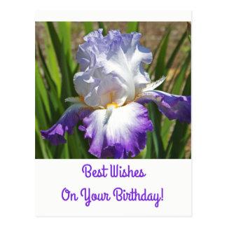 Postal del cumpleaños/iris blanco y