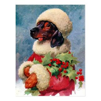 Postal del Dachshund del acebo del navidad del