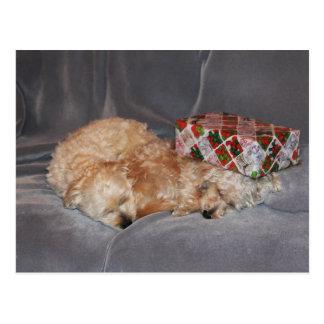 Postal del día de fiesta de los perritos el dormir