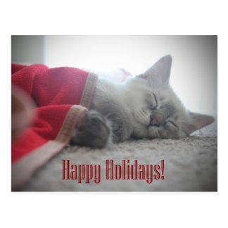 Postal del día de fiesta del gatito el dormir