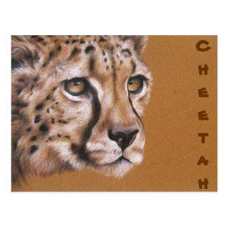 Postal del dibujo original del retrato del guepard
