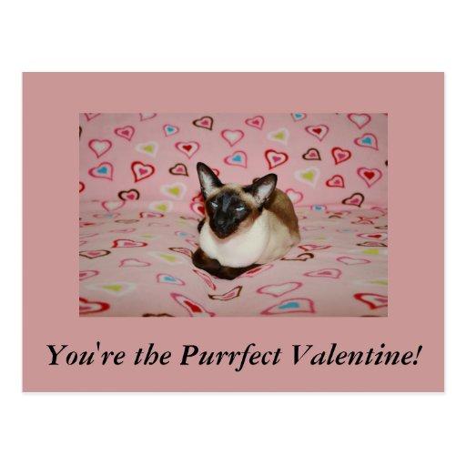 Postal del el día de San Valentín del gato siamés
