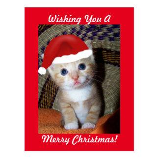 Postal del gatito del navidad