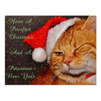 Postal del gato del navidad
