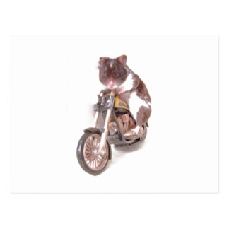 Postal del hámster de la motocicleta