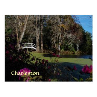 Postal del jardín del pantano de Charleston