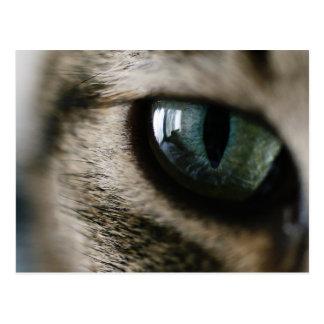 Postal del ojo de gato