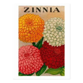 postal del paquete de la semilla del zinnia del