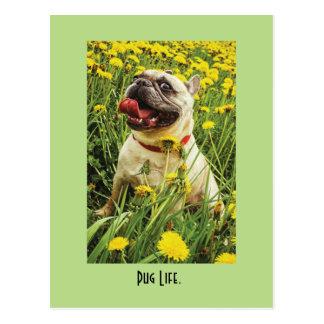 Postal del perro de la vida del barro amasado