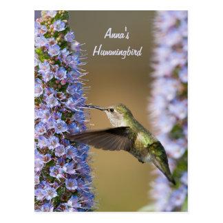 Postal del personalizado de la flor del colibrí