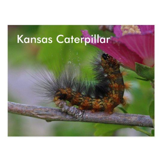 POSTAL del primer de Kansas Caterpillar