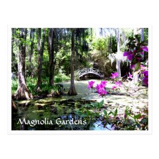 Postal del SC de Charleston de los jardines de la