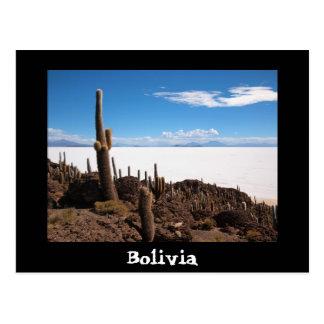 Postal del texto del cactus y de Salar de Uyuni