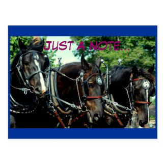Postal demostración del caballo de proyecto del va del