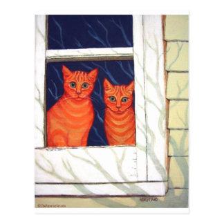 Postal Dentro de mirar hacia fuera - gatos de Tabby