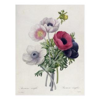 Postal 'DES de Les Choix más las bellezas Fleurs