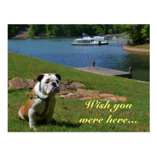 """Postal """"Deseo usted estaba aquí"""" dogo inglés en el lago"""