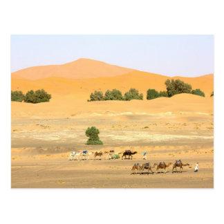 Postal Desierto del Sáhara - camellos y ergio Chebbi