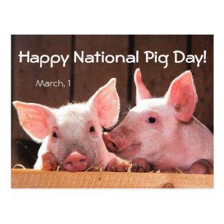 Postal ¡Día nacional feliz del cerdo! (1 de marzo)