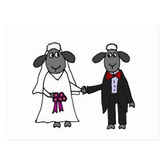 Postal Dibujo animado divertido del boda de las ovejas
