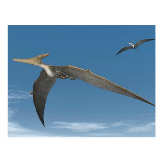 Postal Dinosaurios De Pteranodon Que Vuelan 3d Rinden Zazzle Es Los dinosaurios eran animales terrestres, y (la mayoría) no podían volar. postal dinosaurios de pteranodon que vuelan 3d rinden