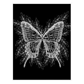 Postal Diseño blanco y negro de la mariposa