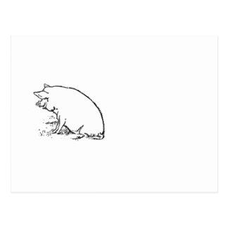 Postal Diseño gallardo del bosquejo del cerdo