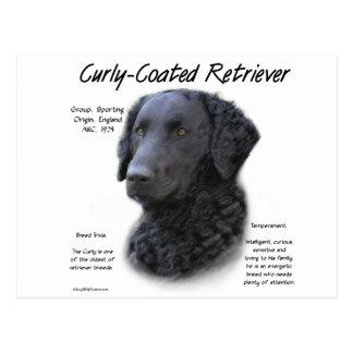 Postal Diseño Rizado-Revestido de la historia del perro