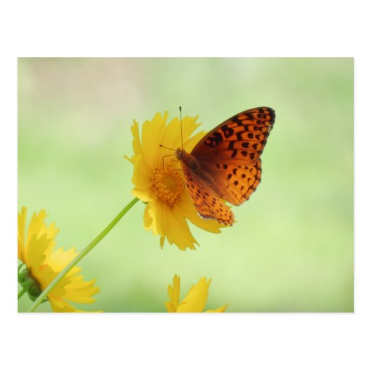 Postal Diversión del Fritillary - mariposa