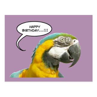 Postal divertida del cumpleaños del loro que habla