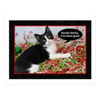 Postal divertida del navidad del gato del smoking