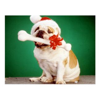 Postal Dogo de Navidad con el gorra y el hueso de Navidad