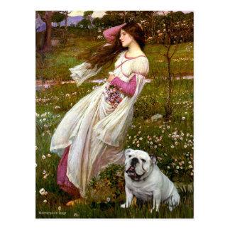Postal Dogo inglés 9 - Windflowers