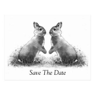 Postal Dos conejos (conejitos): Ahorre la fecha