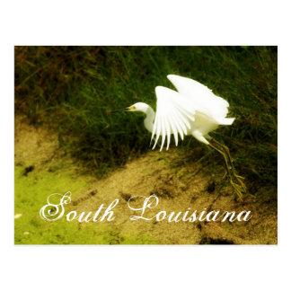 Postal DSC08779bb, Luisiana del sur